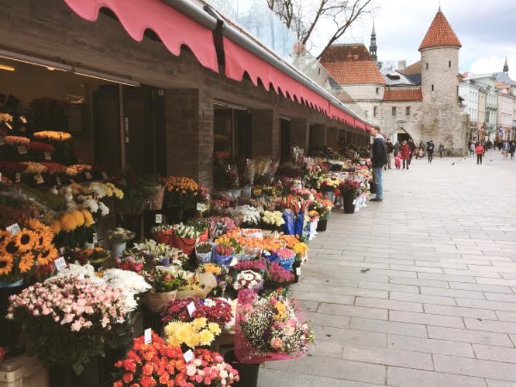 Viru Lillupood ja floristiteenused / Флористические услуги и проджа цветов
